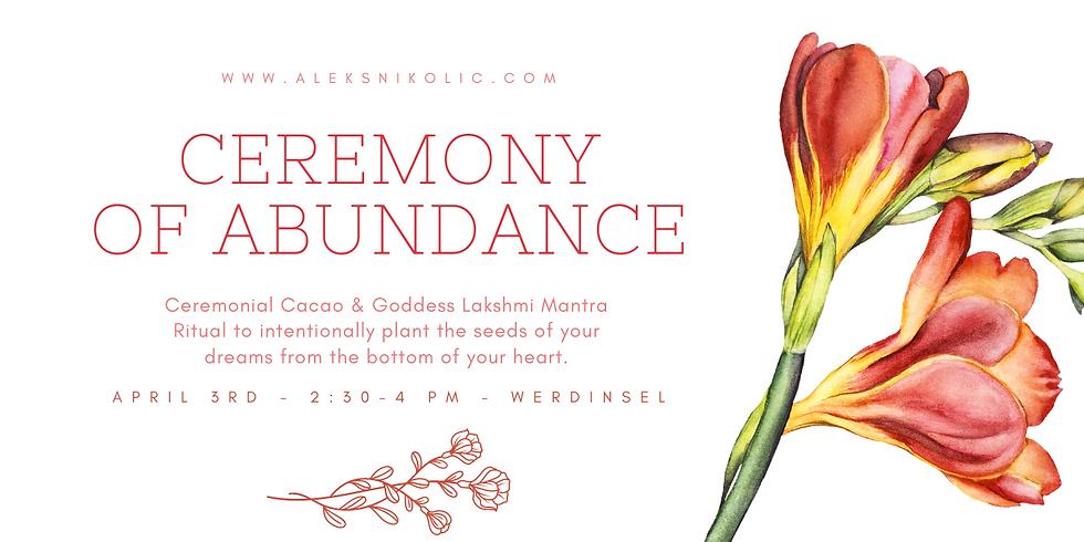 Ceremony of Abundance - Cacao & Mantra Ritual