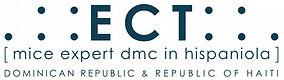 ECT DMC LOGO.jpg