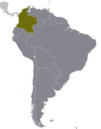 COLOMBIA IN LATAM.jpg