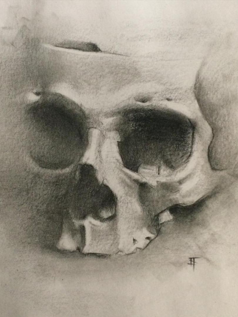 Charcoal. Skull 2.