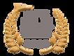 SFS FILM 2020 logo.png