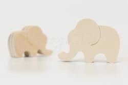 草原-大象