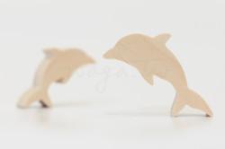 海洋-海豚