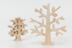 植物-小樹