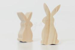 農場-站立兔
