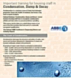 Condensation, Damp & Decay