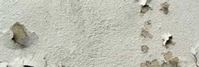 Damp & Mould in Buildings