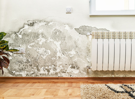 COURSES IN DAMP & CONDENSATION FOR HOUSING STAFF