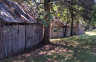 East row of cabins