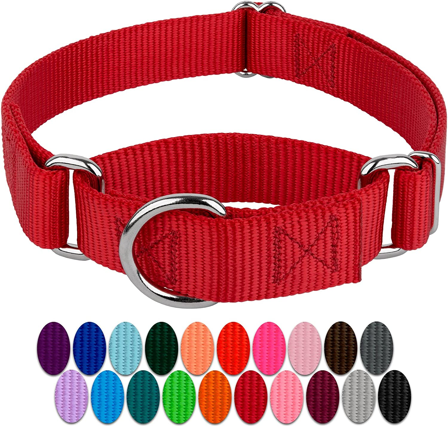 Martingale Collar Sample