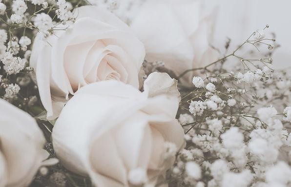 flower-BG2.jpg