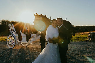 Reception Horse Drawn Carriage