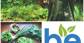 Introducing Be Agriculture!