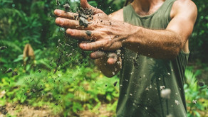 Soil Test Solutions FAQ