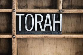 TORAH.BLOCK.jpg