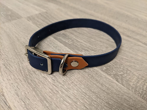 Buckle Collar 1/2 Inch