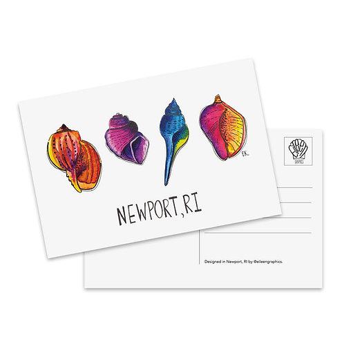 Newport Shells Postcard
