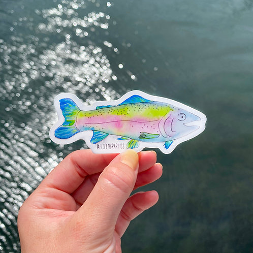 Set of 2 Rainbow Trout Stickers