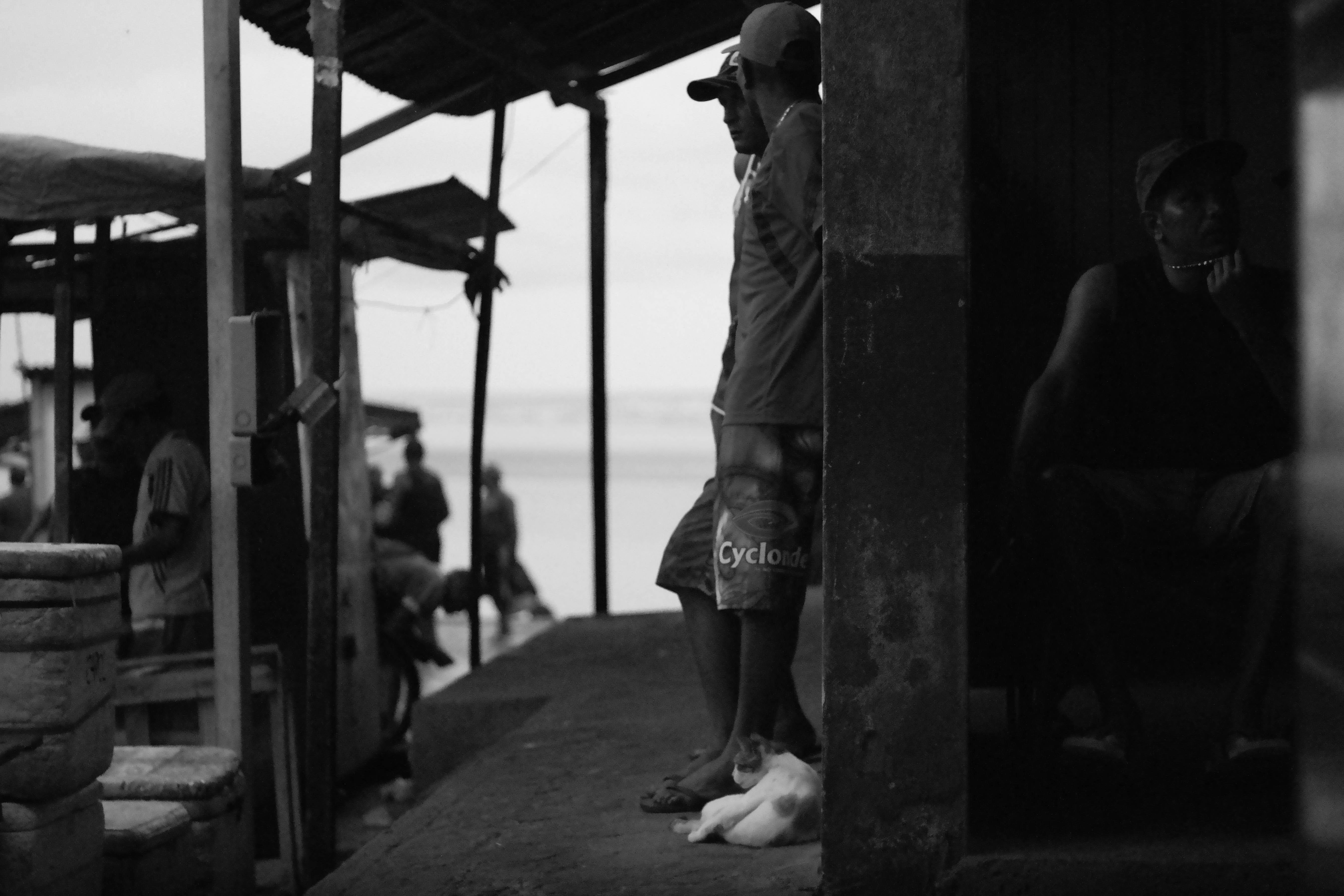 Raposa, MA, Brasil