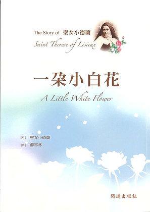 一朵小白花