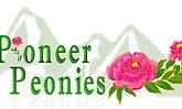 Pioneer New Final Logo 2019.jpg