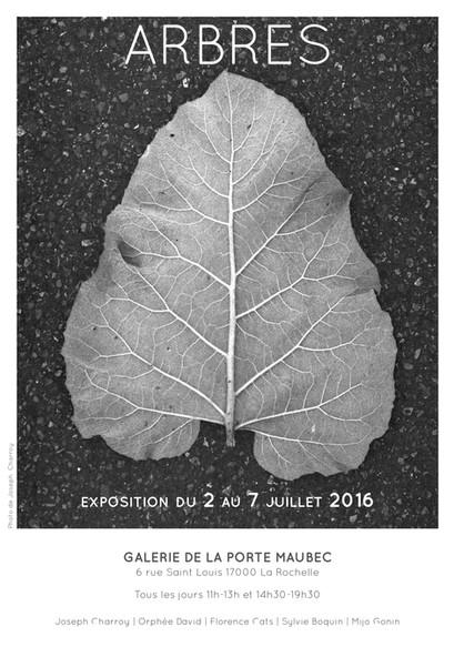 Affiche exposition Arbre La Rochelle Orphée