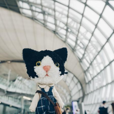 Hong Kong Dollvie2017