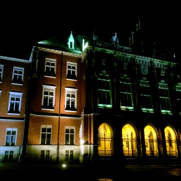 Collegium Novum by night