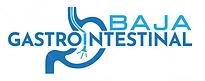 Logo 2 BGI.png