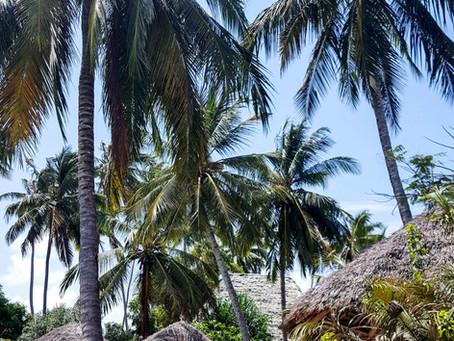 Zanzibar - ráj na zemi, kde je všechno HAKUNA MATATA