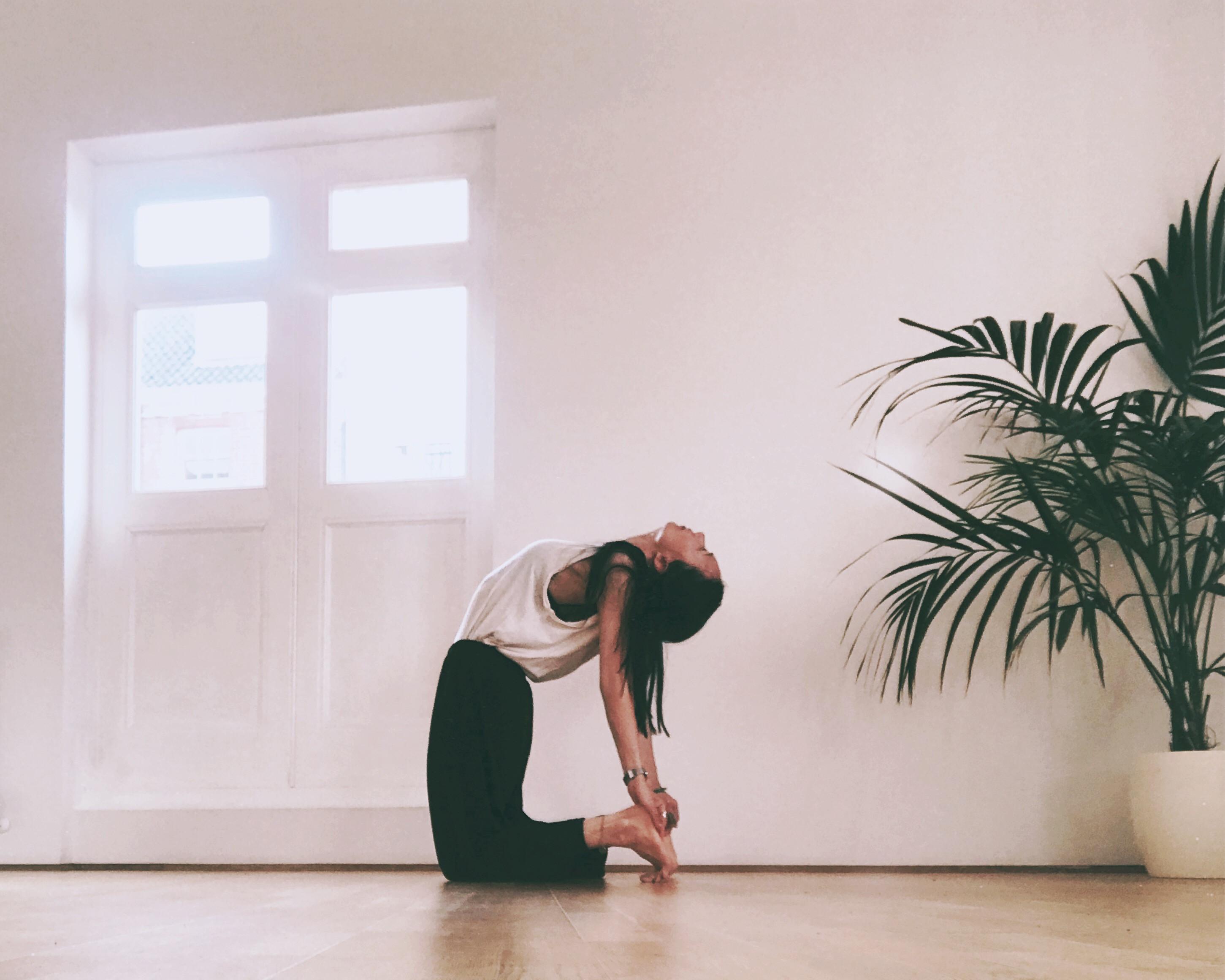 Monday -  Hatha Yoga @The Yoga Tree