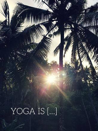 yoga norwich