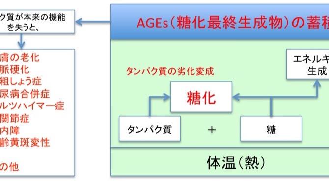6/23更新 病気の原因の糖化、酸化、炎症