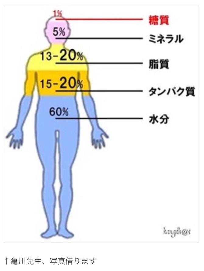 omega-3, 6&9 Oil