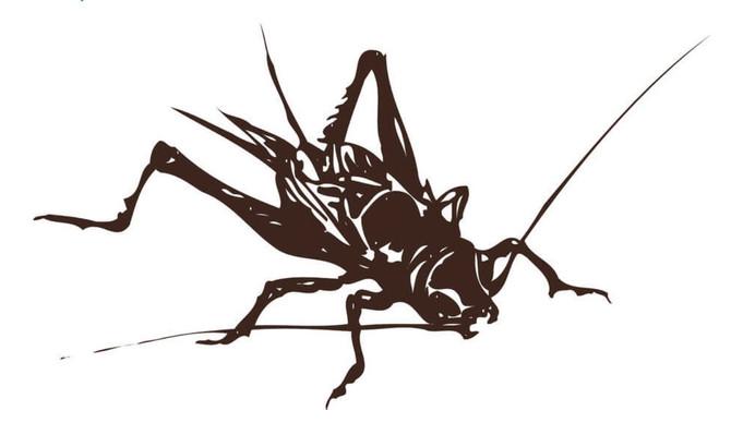 サステナビリティ時代の環境に優しい持続可能な食品=食用昆虫