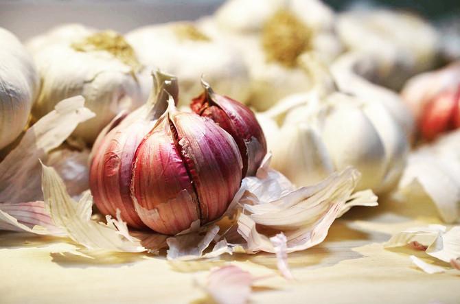 Garlic from Spain (2)
