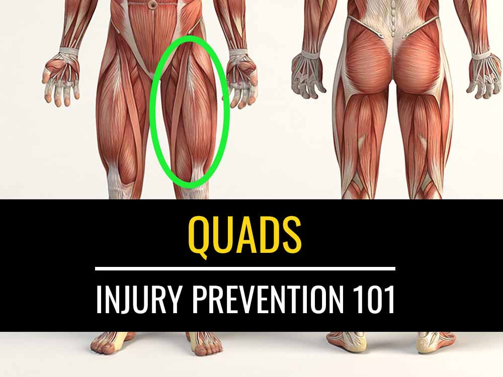 The role the quadriceps play in injury prevention.