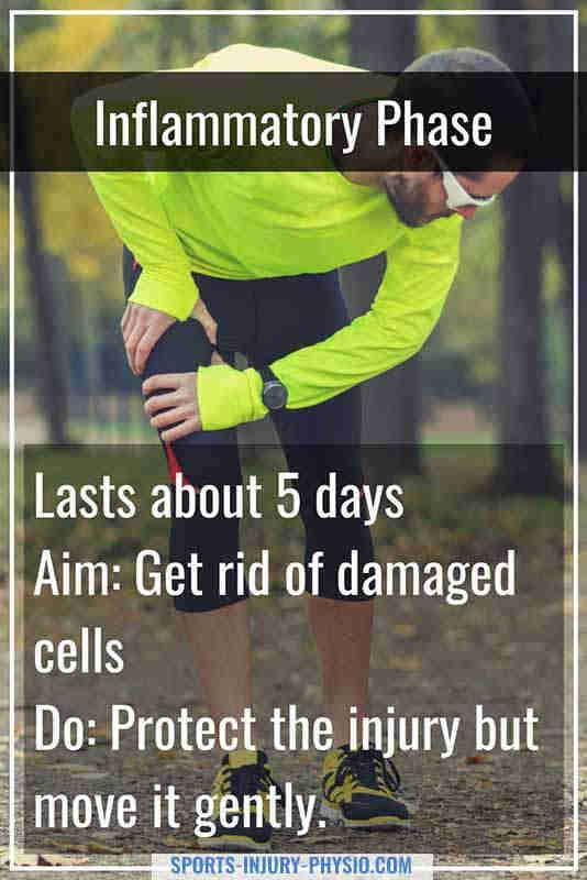 在损伤的炎症期愈合,你应该保护受伤,只轻轻移动。