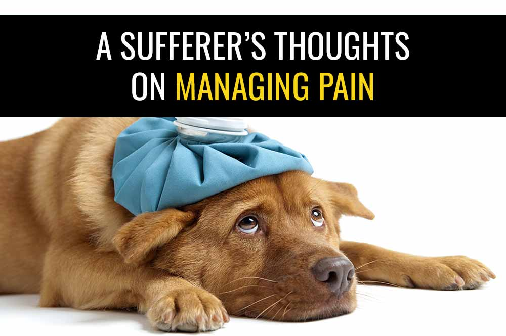 A sufferer's thoughts on managing pain   Sports Injury Physio Blog
