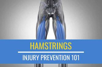 伤害预防101:腿筋