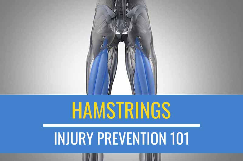 Injury Prevention 101: Hamstring Exercises | Sports Injury Physio
