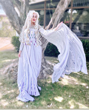 5th Spirit Elsa Frozen 2