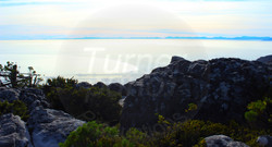 Table Mountain View.jpg