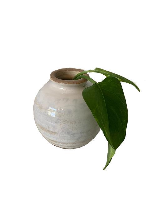 Tiny Tim - Vase
