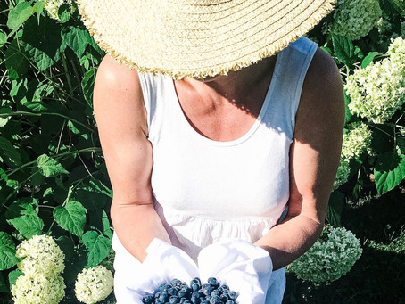 Fresh Blueberry Recipes from My Kitchen | Tracy Struthers Lifestyle