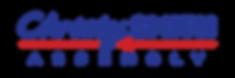 large blue logo.png