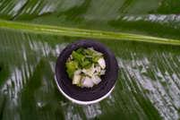 Green onion at Kathiyawadi Bhaanu