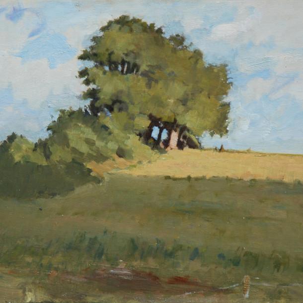 Devon Hillside 30 x 40