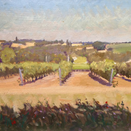 Vines near Ste-Foy-la-Grande 2012  19  x