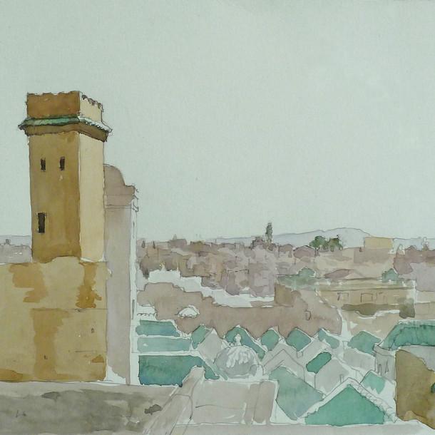 Looking over the Qarawiyyin Mosque, Fez